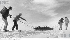 Transport saniami rannej turystki3, 1942 (Narodowe Archiwum Cyfrowe)