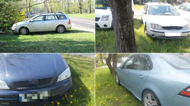 Kierowcy rozjeżdżają trawniki, sypią się tysiące mandatów