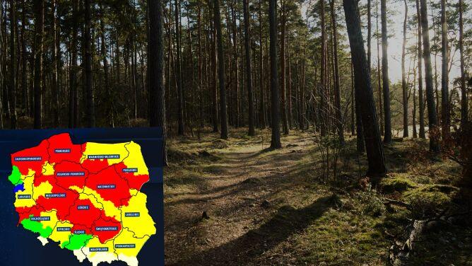 Duże zagrożenie pożarowe w wielu regionach kraju. To skutek upałów