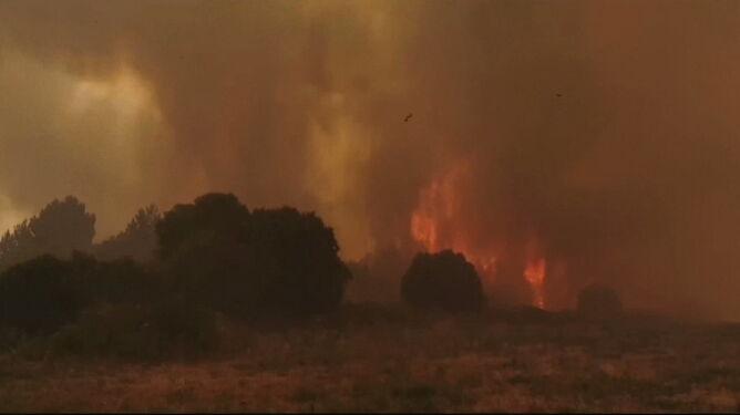 Sardynia w ogniu, 1500 osób opuściło swoje domy. Francja zapowiedziała pomoc
